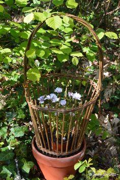coquelicots,fête des fleurs Lalinde,fouleix,jardinage 129.JPG