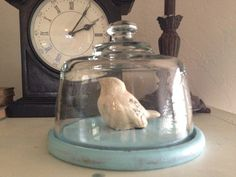 Beachy Shabby Cottage Chic Distressed Turquoise Wood and Glass Cloche on Etsy, $17.99
