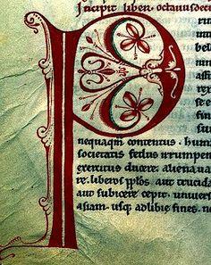 """P"". France 12th cent. Encyclopedie. Enlumin. | by tony harrison"