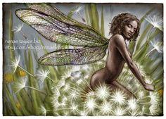 Dandelion by Renae Taylor