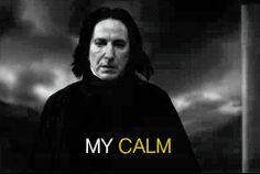 "Servers snape ""my calm hides a story"" gif Harry Potter Magic, Harry Potter Facts, Harry Potter Universal, Harry Potter Fandom, Harry Potter World, Hermione Granger, Draco Malfoy, Professor Severus Snape, Albus Dumbledore"