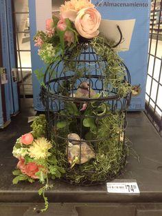 spring, birdcage, moss