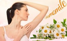 one of the home remedies for excessive sweating is chamomile. Being a rich source of astringent, deodorant, and anti-bacteria properties, this herb can relieve even treat excessive sweating effectively