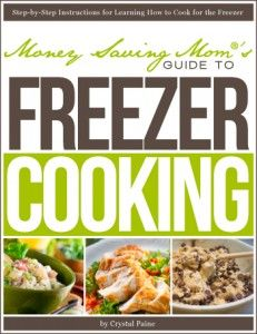 Freezer Cooking Book- free download right now. Recipes included and lots of great practical tips! Yes please!