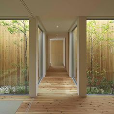 This entry allows the visitor to experience the landscape and the house simultaneously, deepening the connection to the outdoors that the house has by this preceding entryway.