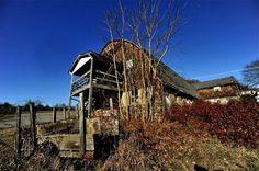 allen farm Shrewsbury, MA