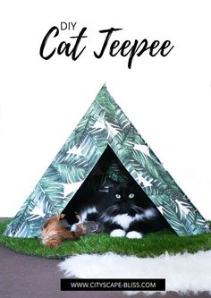 DIY Easy Cat Teepee cardboard cat tipi how to make Cityscape Bliss // Naughty felines how to make cat toys cat house cat bed cat tent black and white tuxedo cat