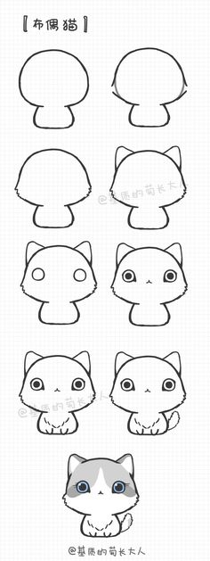 Cat - For more pins follow: @OtakuWalker ^-^