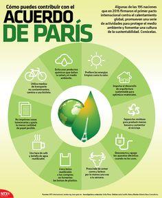 Descubre cómo puedes contribuir con el Acuerdo de París. #InfografíaNTX
