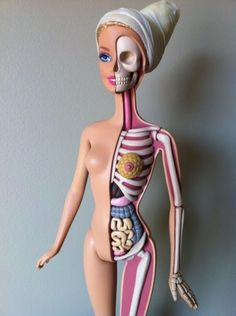 When you look inside a Barbie doll