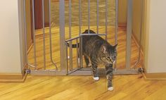 Groupon - Extra-Wide Pet Gate with Small Walk-Through Door in [missing {{location}} value]. Groupon deal price: $37.99