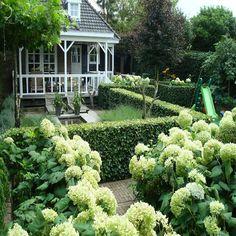 Door de strakke hagen en vakindeling van de tuin, heeft deze tuin een klassieke uitstraling.     Door de combinatie van elegante materialen en rijkelijke beplanting is deze tuin een lust voor het oog!