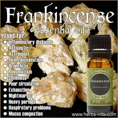 Learn all about the uses and benefits of Frankincense EO with our free guide!