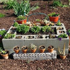 This cement blocks raised garden bed is easy to put together. Adding planters around it gives my southwest garden bed a nice focal point. Cheap Raised Garden Beds, Raised Bed Garden Design, Building A Raised Garden, Organic Gardening, Vegetable Gardening, Gardening Tips, Veggie Gardens, Garden Pots, Cement Garden