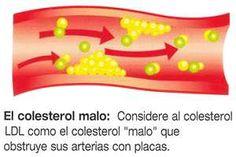En la actualidad la palabra súper alimento encierra un potencial que va más allá de la nutrición, ya que alcanza la prevención y tratamiento complementario de las enfermedades, entre ellas el colesterol. SIGUE LEYENDO EN: http://alimentosparacurar.com/n/7081/super-alimentos-que-bajan-el-colesterol.html