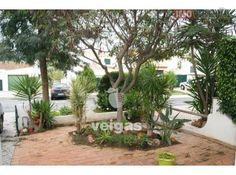 Moradia V3 em bom estado Casas No Algarve, Plants, Townhouse, Nice, Flora, Plant, Planting