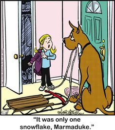 Marmaduke Comic Strip, November 18, 2016     on GoComics.com