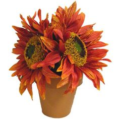 This is an oh, so easy centerpiece anyone can make. It's a great hostess gift for your holiday dinner.
