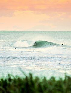sur , surf