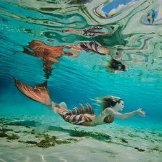 25 essential weekend road trips every Orlandoan should take Fantasy Creatures, Mythical Creatures, Sea Creatures, Mermaid Cove, Mermaid Art, Mermaid Paintings, Tattoo Mermaid, Vintage Mermaid, Real Mermaids