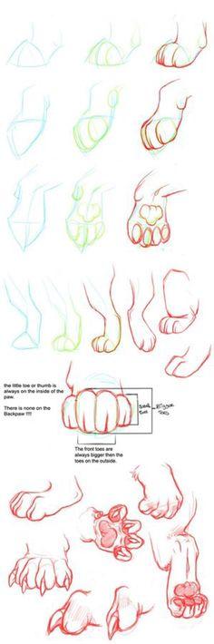 Paw tutorial by Nizira-Hathor on @DeviantArt