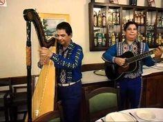 Índia - Harpa paraguaia