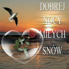 Good Day, Good Night, Good Morning, Pictures, Dan, Album, Polish, Cool Things, Buen Dia