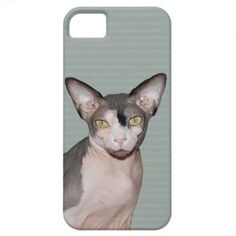 iPhone 5 Case with Sphynx Cat Ninja.