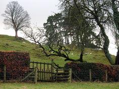 Beatrix Potter's farm, Hill Top, near Sawrey, Cumbria, UK.