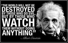 """""""The world will not be destroyed by those who do evil but by those who watch them without doing anything.""""  - Albert Einstein"""