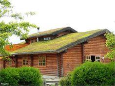 Real Swedish loghouse