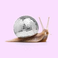 Disco Snail 🐌 by Paul Fuentes Photomontage, Spotify For Artists, Plakat Design, Mirror Ball, Photoshop, Illustration, Disco Ball, Disco Party, Monochrom