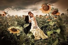 Interesting Sunflower Bridal Photo Shoot - by Sergey Ivanov (Seriv)