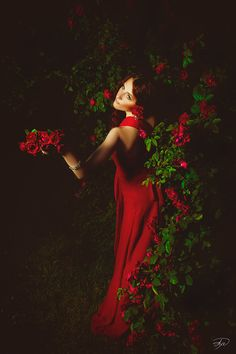 red and green lovelies ..X ღɱɧღ ✿⊱╮Raindrops and Roses