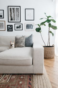 Tour a Calming Chicago Townhouse With the Roof Deck of Our Dreams. Grey and blue throw pillows on a beige sofa looks so modern stylish. Small Apartment Living, Living Room On A Budget, Small Living Rooms, Small Apartments, Home Living Room, Living Room Designs, Living Room Decor, Beige Sofa Living Room, Carnegie Hall