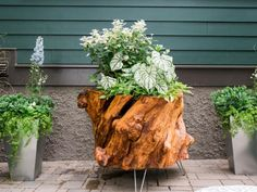 Learn how to make a one-of-a-kind planter out of an old tree stump from HGTV Urban Oasis 2016 host Matt Blashaw.