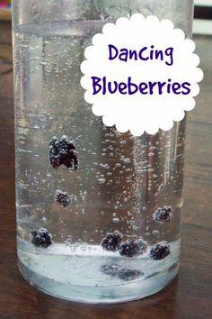 Dancing Blueberries - Fun science for kids! http://www.pinterest.com/buddingfarmers/food-is-science/