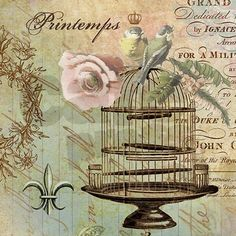 Vintage French Shabby chic birdcage Shower Curtain