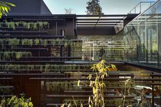 Falcon Headquarters 2 / Rojkind Arquitectos + Gabriela Etchegaray - Buscar con Google