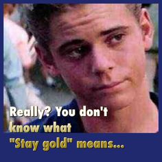 Me to my friends when they never even heard about The Outsiders. But now they live the movie because of me. And we call each other by our favorite characters! I'm Ponyboy The Outsiders Ponyboy, The Outsiders 1983, Lets Do It, Love You All, My Love, Stay Gold Meaning, Ralph Macchio The Outsiders, Dallas Winston, Darry