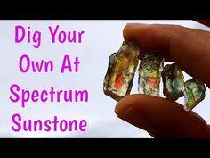 Crystal Rockhounding @ Spectrum Sunstone Public Mine in Oregon Oregon Vacation, Oregon Travel, Crystals And Gemstones, Stones And Crystals, Rock Ranch, Gem Hunt, Rock Hunting, Rock Collection, Rocks And Gems