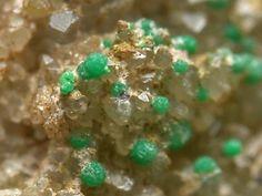 Cesbronite, Cu2Te6+O6.2H2O, Bambollita Mine,Moctezuma,Mun. de Moctezuma,Sonora,Mexico