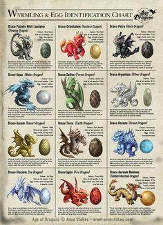 It is important to be able to correctly identify dragons. The young of one species may play, but another will most likely attack you with fire! Here is a useful chart listing some of the different wyrmlings, eggs and their characteristics. Age of Dragons © Anne Stokes.
