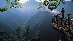 Nature Beautiful short video 720p HD
