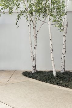 Tide Weave - Fog & Linen | Armadillo & Co