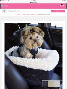Pet car seat fits on console. Quilted nylon pet seat secures between the front seats of cars or SUV's. Yorkie Dogs, Yorkies, Puppy Carrier, Car Console, Dog Car Seats, Dogs Of The World, Small Dogs, Cute Puppies, Fur Babies