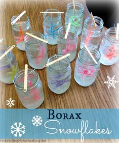 Borax Snowflakes - What a fun and educational kid& craft!, Borax Snowflakes - What a fun and educational kid& craft! Borax Snowflakes - What a fun and educational kid& craft! Christmas Crafts For Kids, Christmas Activities, Diy Christmas Ornaments, Craft Activities, Preschool Crafts, Fun Crafts, Christmas Decorations, Snowflake Ornaments, Preschool Winter