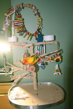 Pet enrichment ideas on pinterest bird toys parrot for How to build a bird stand