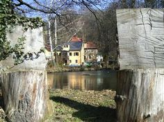 Unmittelbar neben unserem Grundstück: Der alte Mühlteich speist die Fontäne im Schlosspark Pillnitz.