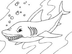 Whale Sharks Coloring Pages Printable